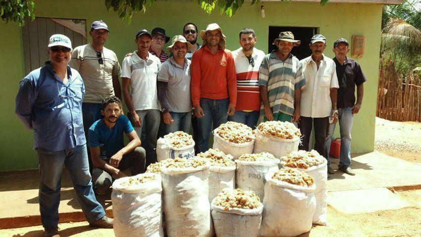 Santi Mallorquí en Brasil con agricultores de Organic Cotton Colours