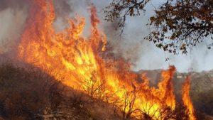 Videos: Demanda a Southern California Edison por responsabilidad en el peor incendio de California