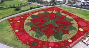 México arrebata récord Guinness a Arabia Saudita al lograr el tapete de Nochebuenas más grande del mundo