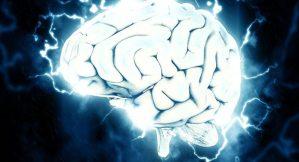 Logran revivir por primera vez un cerebro muerto
