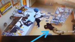 Video: Un cliente le roba a un ladrón armado mientras asaltaba un supermercado