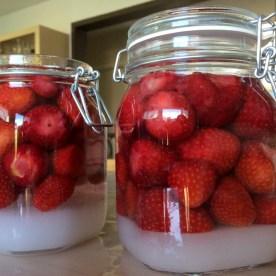 Und für die Erwachsenen: Erdbeerlikör für die kalte Jahreszeit.