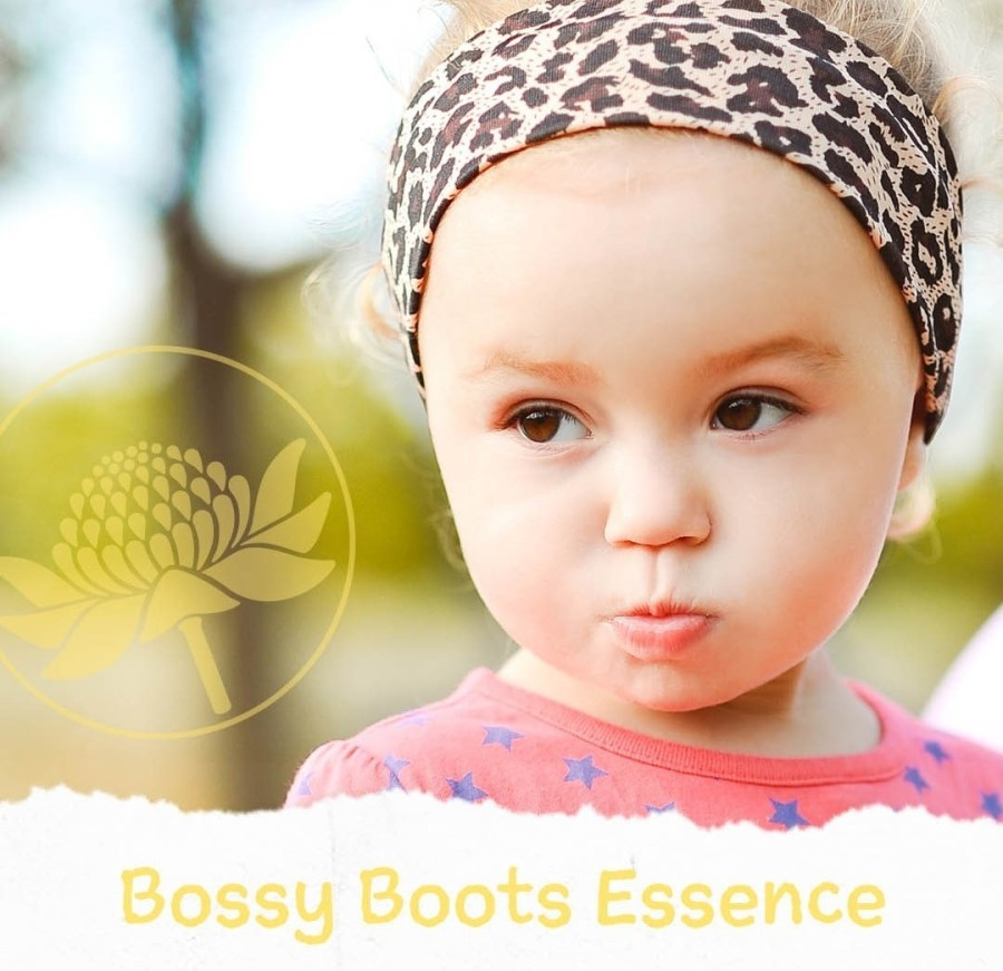 Bossy Boots Essence (Dominante)