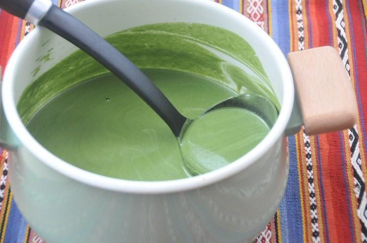 42-sopa de espinaca y alcachofas