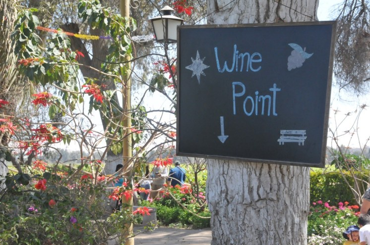 Si te gusta el vino, este destino te va a encantar!