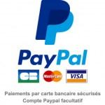 Logo paypal et carte bancaires