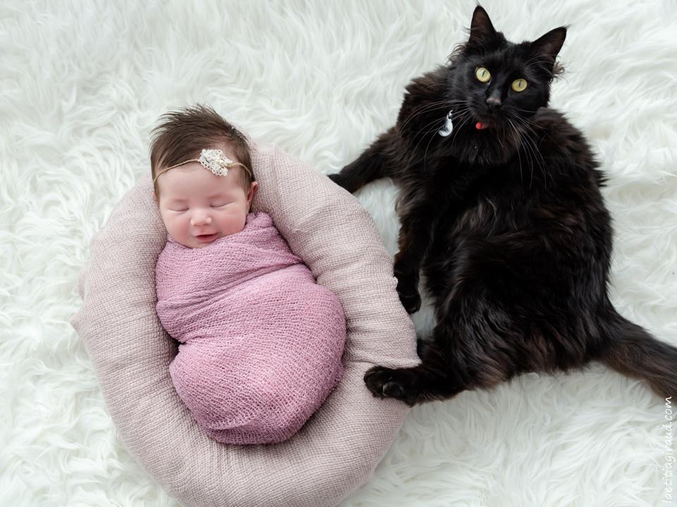 bébé et le chat qui le surveille
