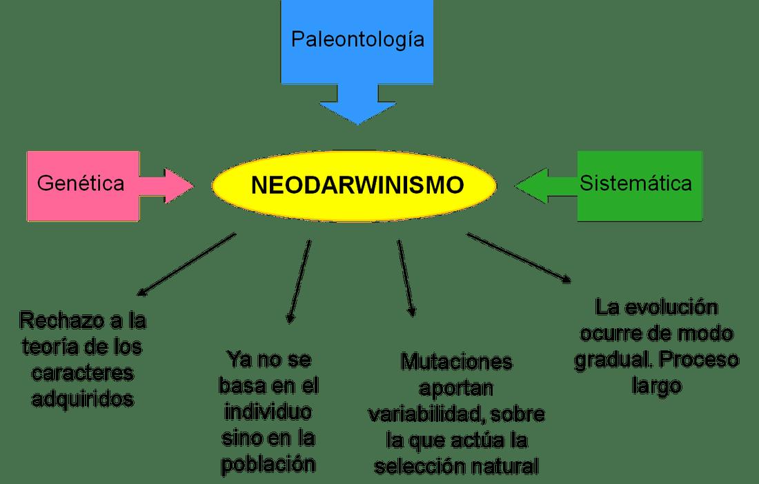 Resultado de imagen de teoria sintetica de la evolucion o neodarwinismo
