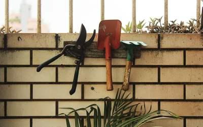 Le petit lexique du jardinier débutant