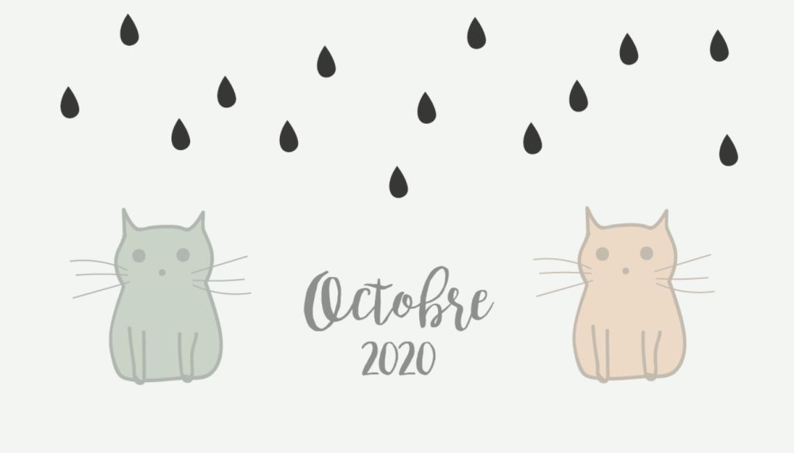 calendrier-octobre-chats-diy