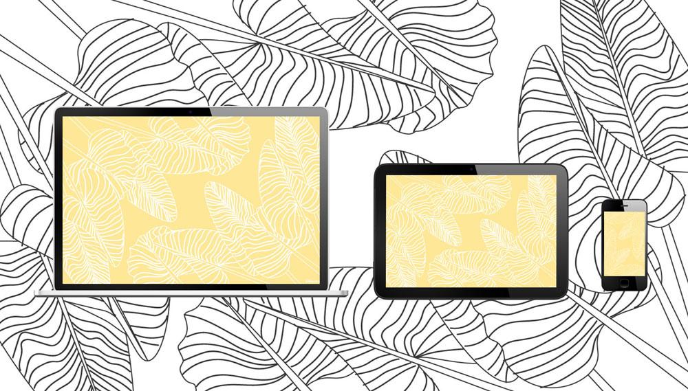 Fond-decran-feuilles-jaunes