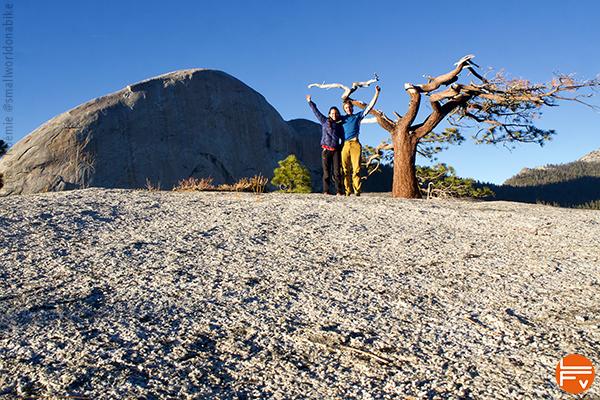 Adam et Noémie au sommet de la voie, sur une dalle de granit, arbre déformé par le vent
