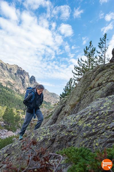 veste goretex patagonia alpinisme