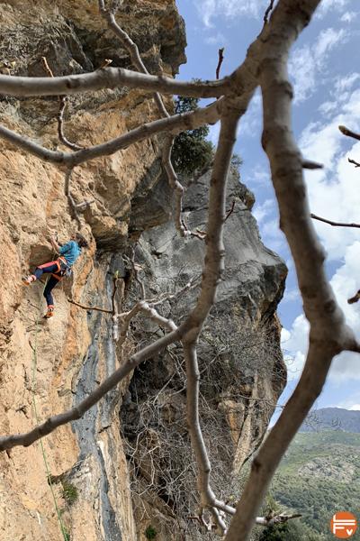escalade falaise corse