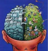 Un cerveau a 2 hémisphères ...