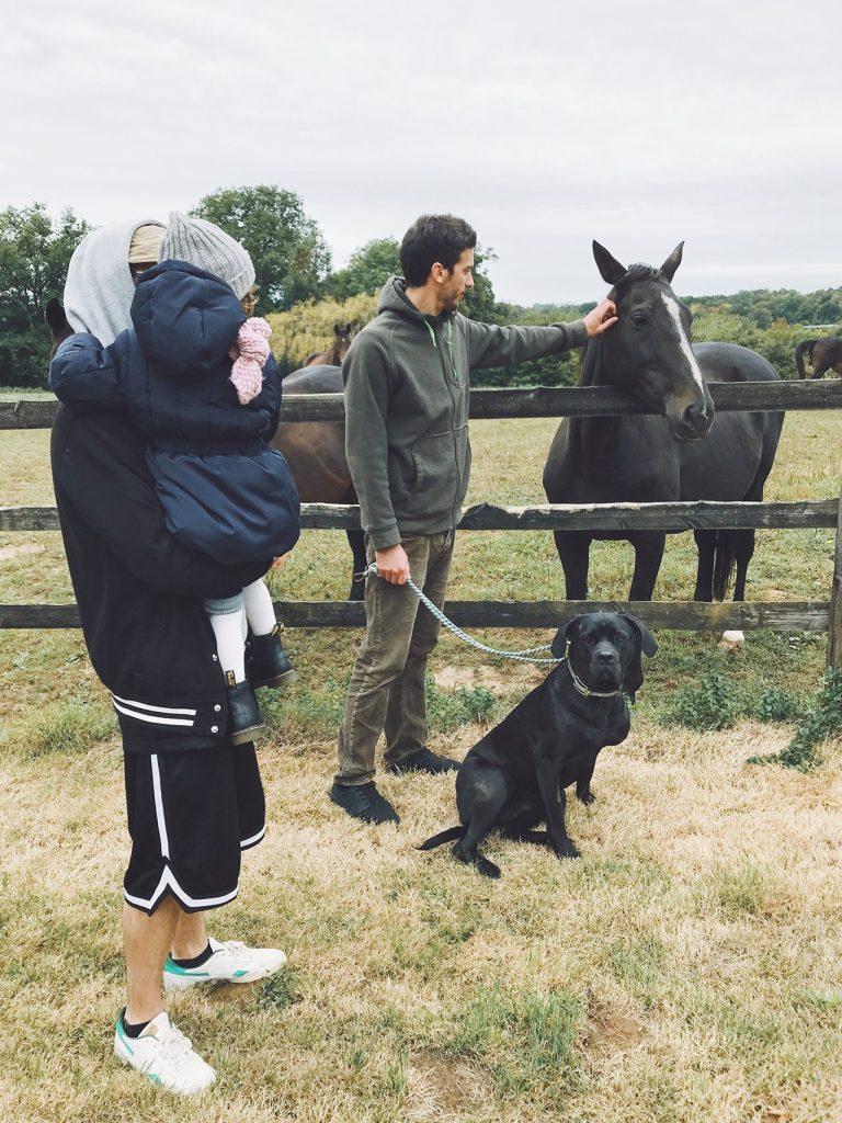simon, le cheval et la famille