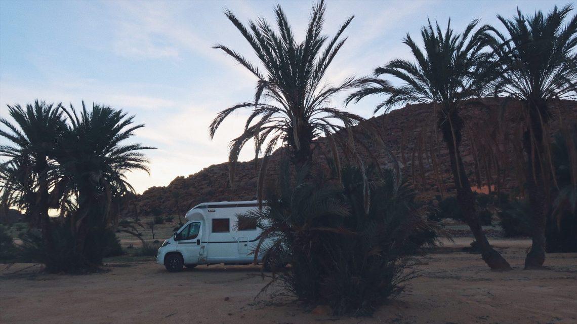 Camping sauvage à la palmeraie de Tafraout
