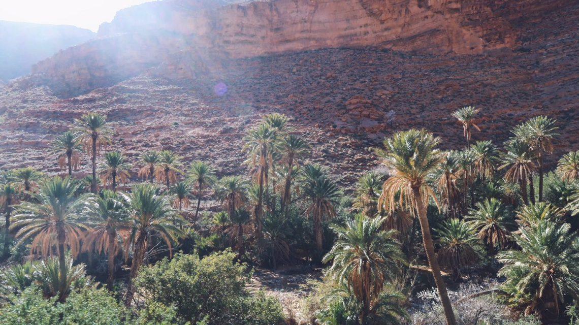 Voyage au Maroc gorges d'ait mansour et ses palmiers