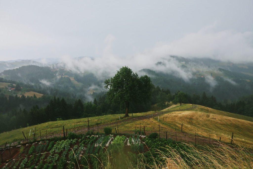 La ferme Pr Stotnkarju en Slovénie