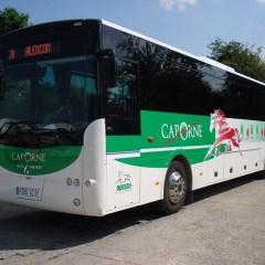 Cap Orne : Des lignes de transport régulières