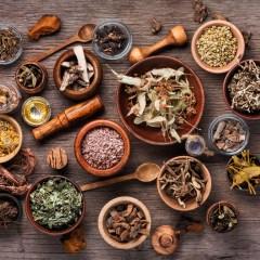 De novembre à Février : Ateliers d'Herboristerie