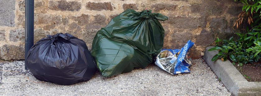 Lions Club ramassage des déchets