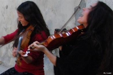 violoneuses