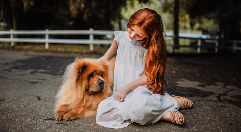 Love-for-Animals-Laffaz-Media