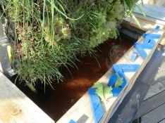 Mur végétal et aquaponique de Zone-AH!