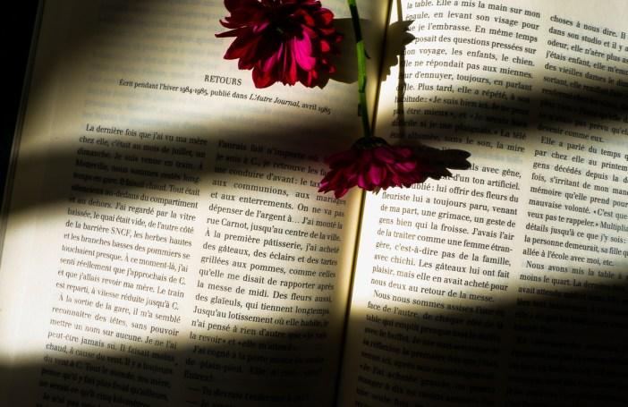 prendre le temps de se remettre à lire