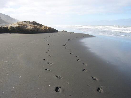 Kariotahi Plajı, Yeni Zelanda