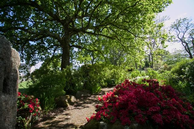 Gite - jardin (Copier) (2)