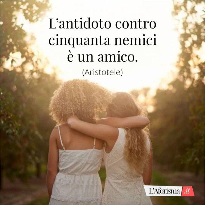 Frasi amicizia - L' antidoto contro cinquanta nemici è un amico. (Aristotele)