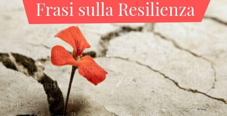 Le più belle frasi aforismi e citazioni sulla resilienza