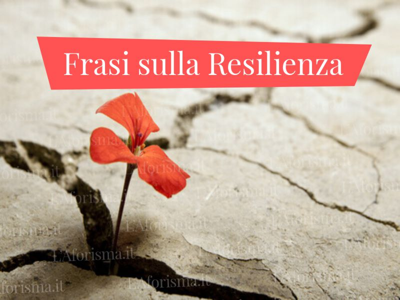 Le più belle frasi aforismi e citazioni sulla resilienza