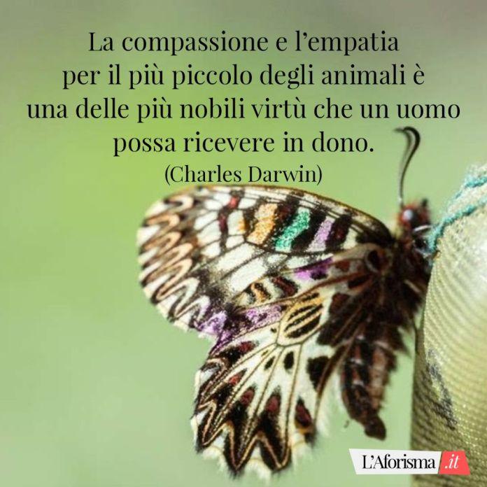 La compassione e l'empatia per il più piccolo degli animali è una delle più nobili virtù che un uomo possa ricevere in dono. (Charles Darwin)