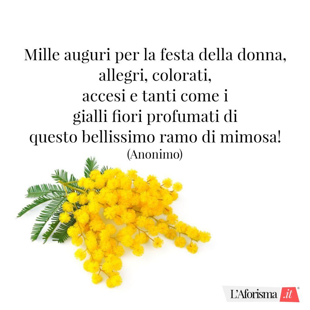 Mille auguri per la festa della donna, allegri, colorati, accesi e tanti come i gialli fiori profumati di questo bellissimo ramo di mimosa! (Web)