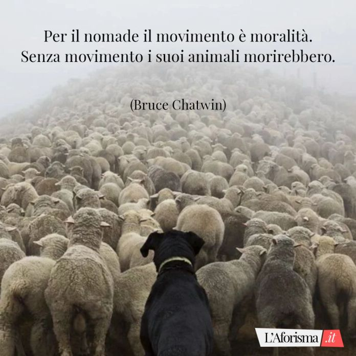 Per il nomade il movimento è moralità. Senza movimento i suoi animali morirebbero. (Bruce Chatwin)