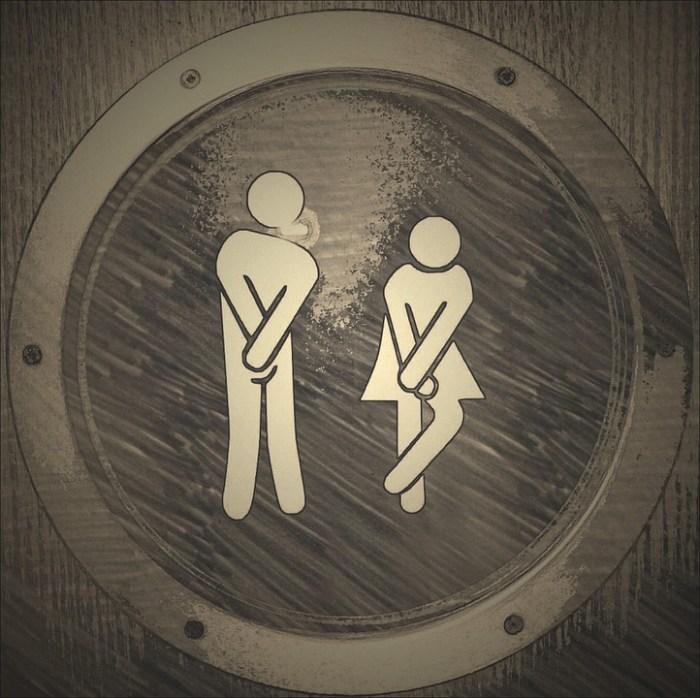 Toilet, Wc, Loo, Public Toilet, Cute, Funny, Woman, Man