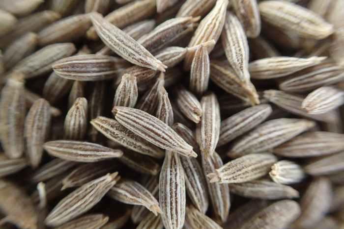 cumin, cumin seeds, seeds