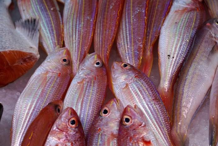 Peixe, Frutos Do Mar, Mar, Mercado, Oceano