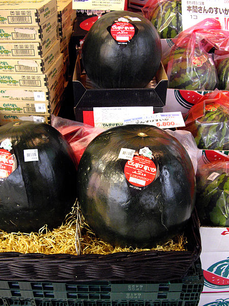 File:Densuke watermelon.jpg