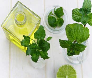 File:Tea tree oil.jpg