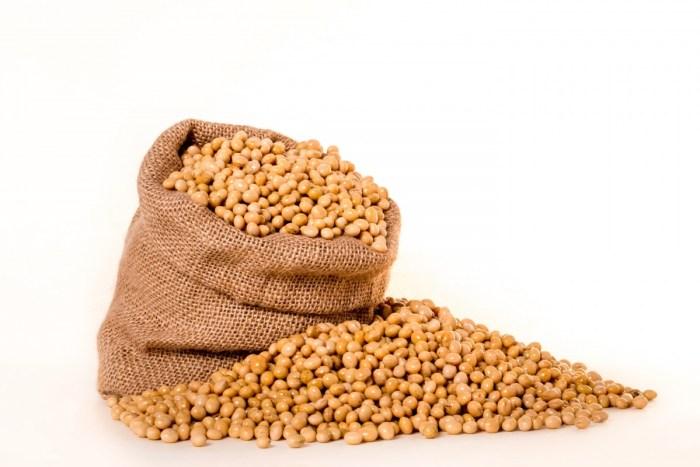 soybeans plants seeds bag burlap grain oil beans