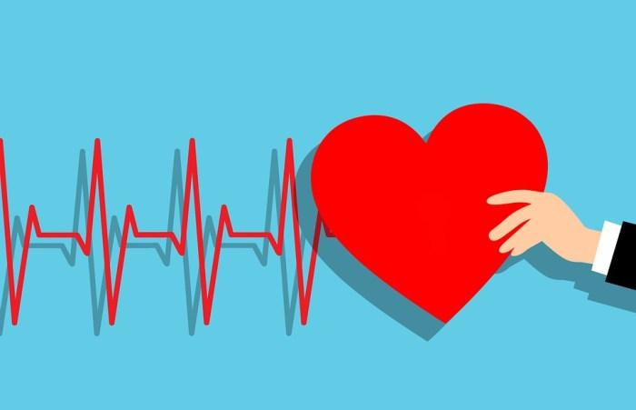 Heartbeat, Heart, Hand, Cardiac, Rate, Heartbeat Line
