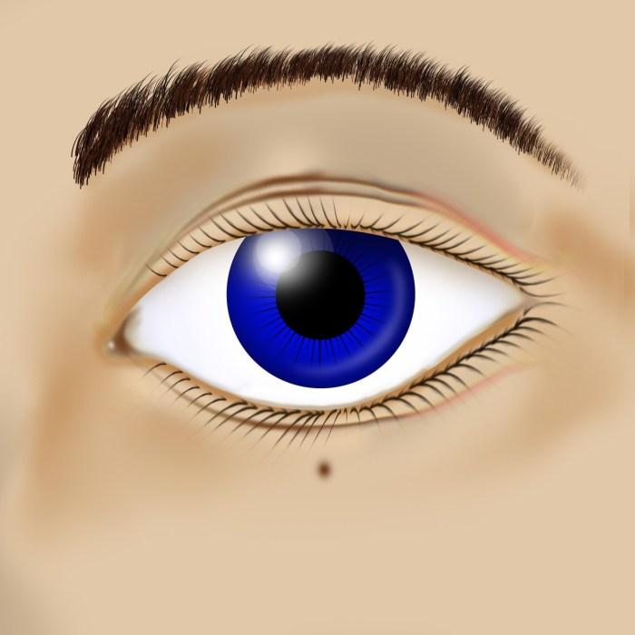 C:\Users\Zubair\Downloads\eyeball-3150444_1920.jpg