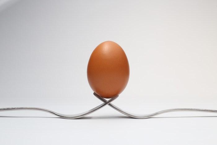 C:\Users\Zubair\Downloads\brown-egg-3640669.jpg