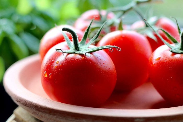 C:\Users\Zubair\Downloads\natural-foods-local-food-red-food-fruit-tomato-1620637-pxhere.com.jpg