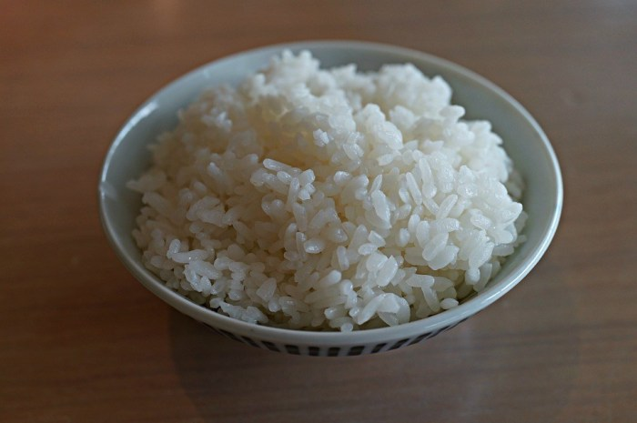 https://i2.wp.com/lafzblog.overstockpk.com/wp-content/uploads/2019/09/white-rice-japanese-meal-restaurant-cuisine-1.jpeg?w=700