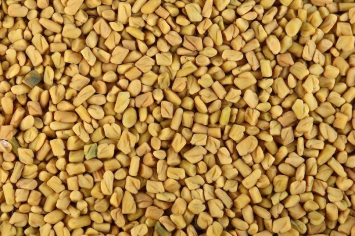 File:Fenugreek seeds.jpg